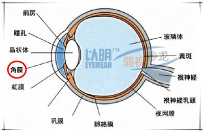 角膜曲率30